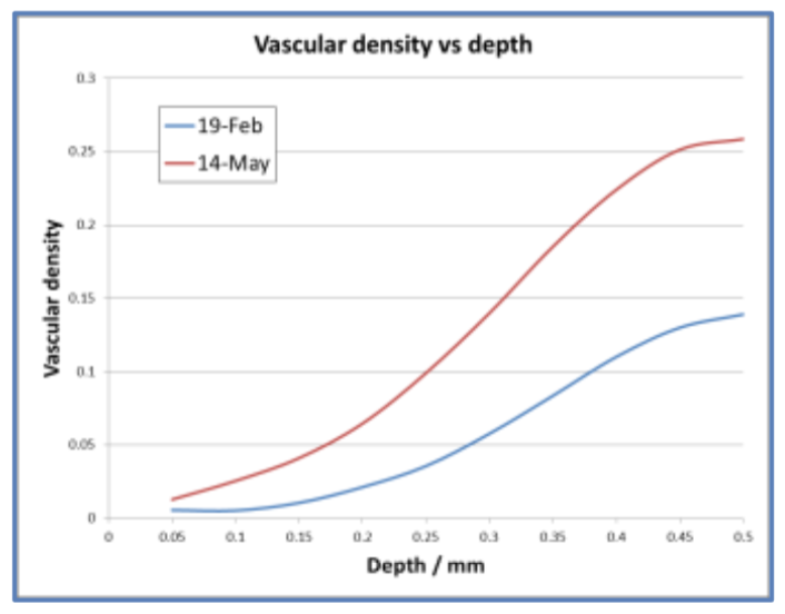 Vascular Density Changes in the skin quantified